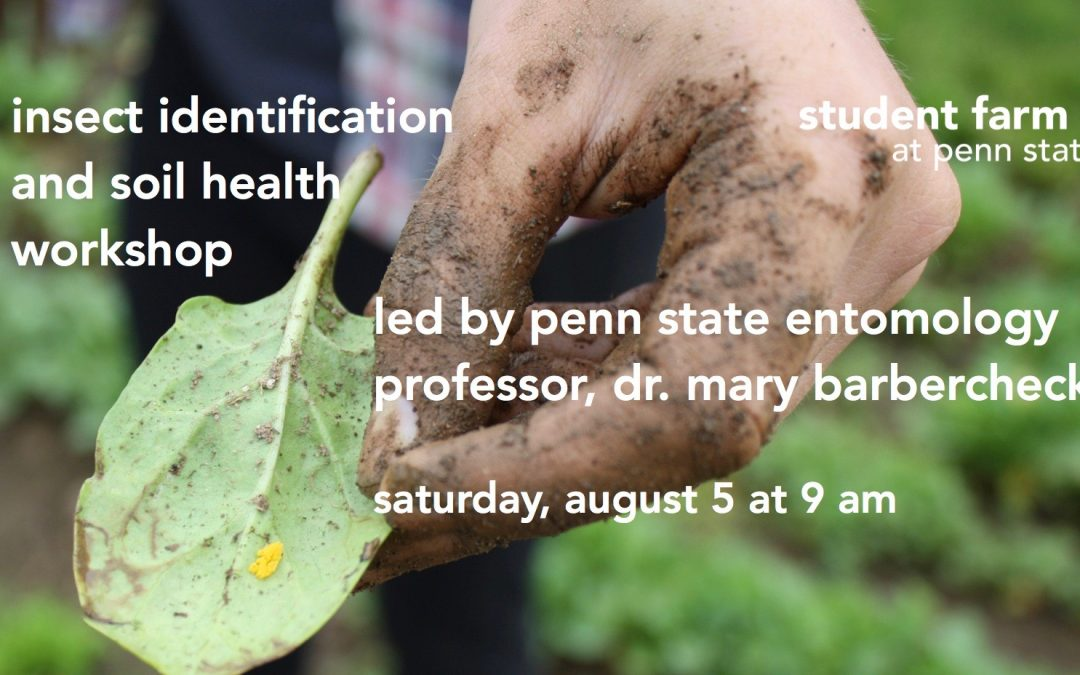 Insect Identification and Soil Health workshop