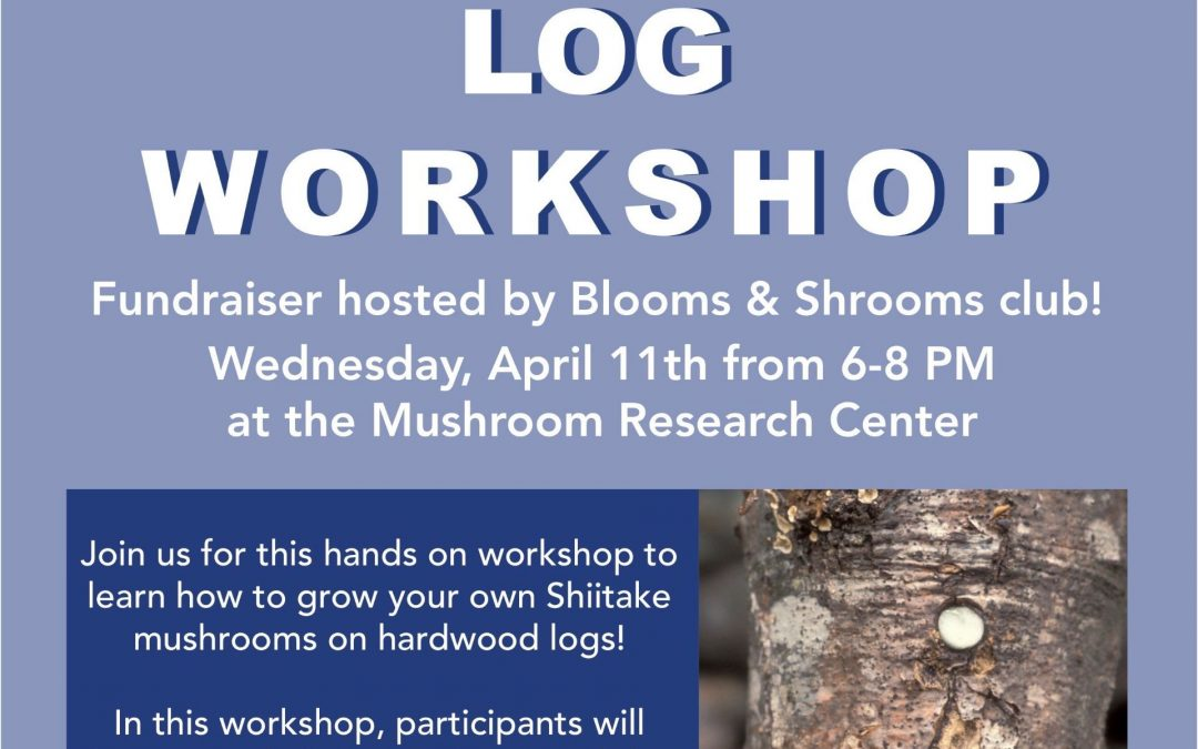 Shiitake Log Workshop