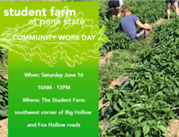 Community Volunteer Day – Saturday, June 16th