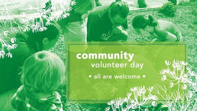 Community Work Day, July 21