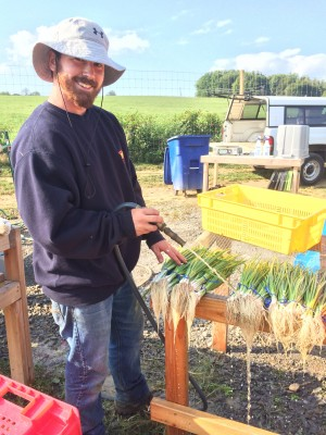 Cleaning scallions on the farm (Leslie Pillen)