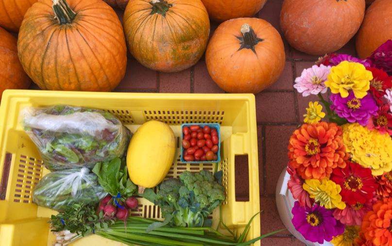One of our fun CSA baskets which included a pumpkin of their choice as well as a beautiful bouquet of flowers (Mary Lemmon)