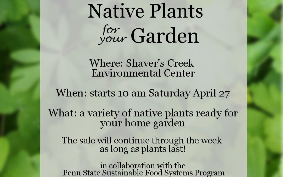 Shaver's Creek Native Plant Sale